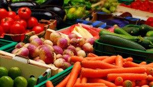auckland farmers market Wynyard quarter